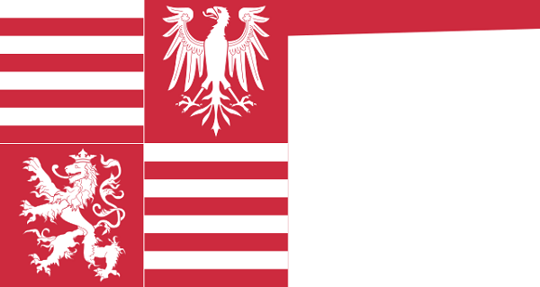 Bandeira da Hungria: história e significado 8