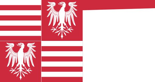 Bandeira da Hungria: história e significado 9