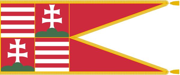 Bandeira da Hungria: história e significado 11