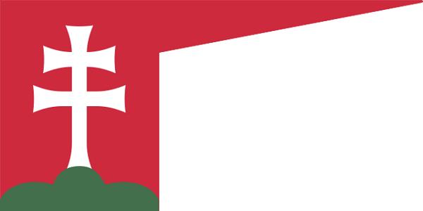 Bandeira da Hungria: história e significado 5