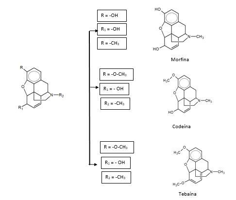 Fenantreno: Estrutura Química, Propriedades e Usos 5