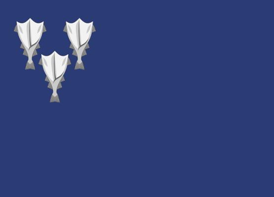 Bandeira da Islândia: história e significado 6