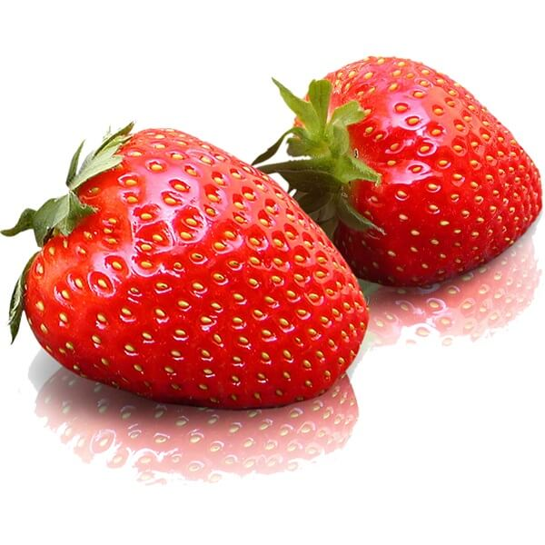 15 Alimentos e produtos do clima temperado 13