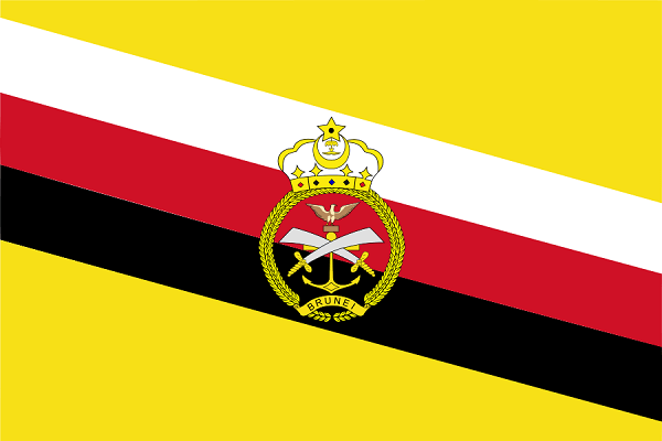 Bandeira do Brunei: História e Significado 6