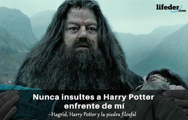 As 100 melhores frases de Harry Potter 18