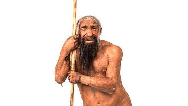 Evolução do homem: estágios e suas características 13