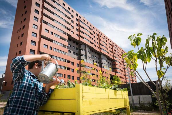 Jardins urbanos: características, tipos, benefícios 3