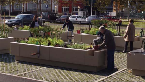 Jardins urbanos: características, tipos, benefícios 1
