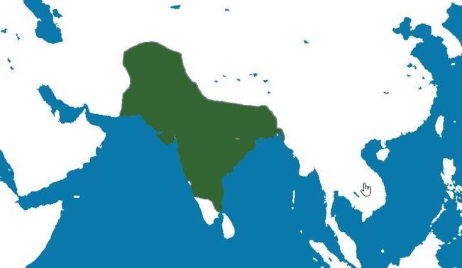 Império Mogol: Origem, Localização, Características, Economia 1