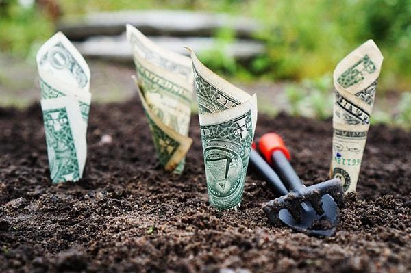 Investimento inicial em uma empresa: estrutura e exemplo 1