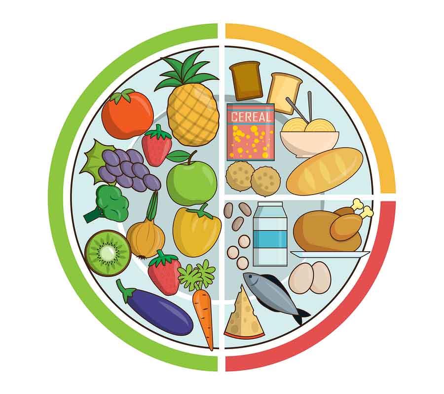 As 4 leis dos alimentos para uma dieta adequada 1