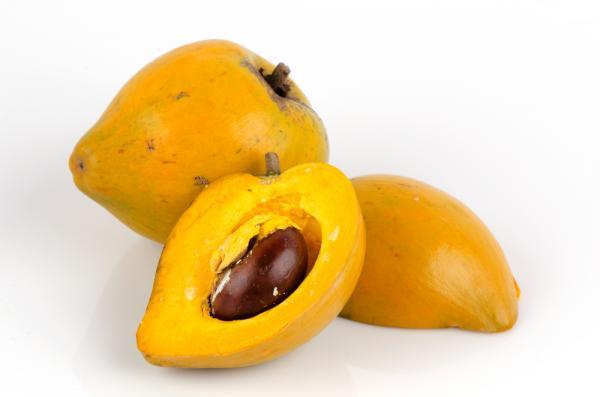 Os 30 frutos mais comuns da serra equatoriana 9