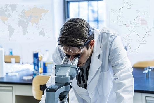 Quais são as regras do método científico? 1