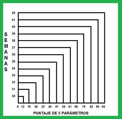 Teste de Capurro: base, tipos, parâmetros, cálculos, sensibilidade 2