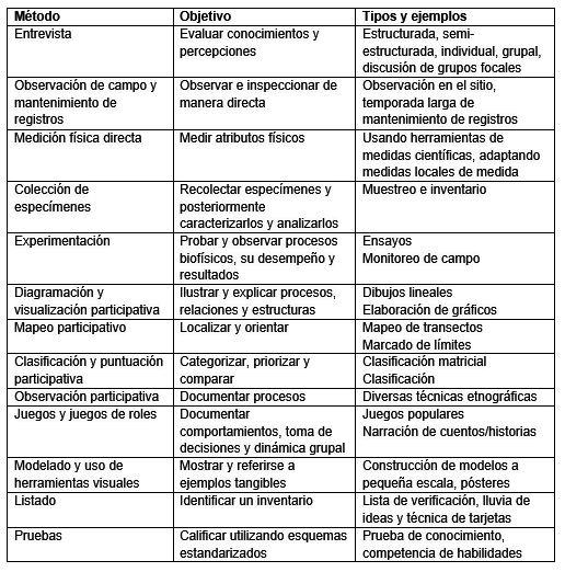Diagnóstico participativo: definição, processo e benefícios 2