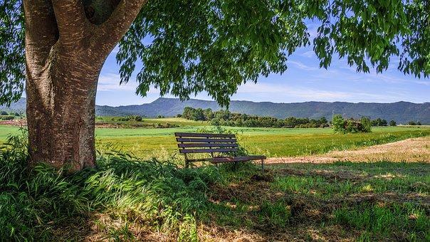 Ambiente Rural: Características, Elementos e Atividades 1