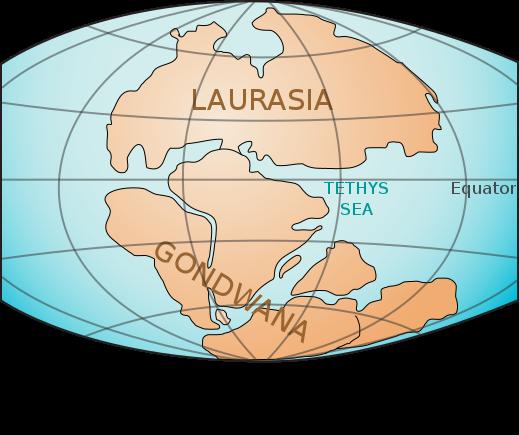 Era Mesozóica: características, divisões, geologia, espécies 2