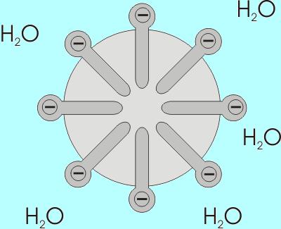 Ácidos graxos: estrutura, tipos, funções, biossíntese 6