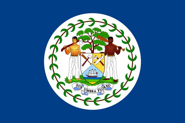 Bandeira do Belize: História e Significado 4