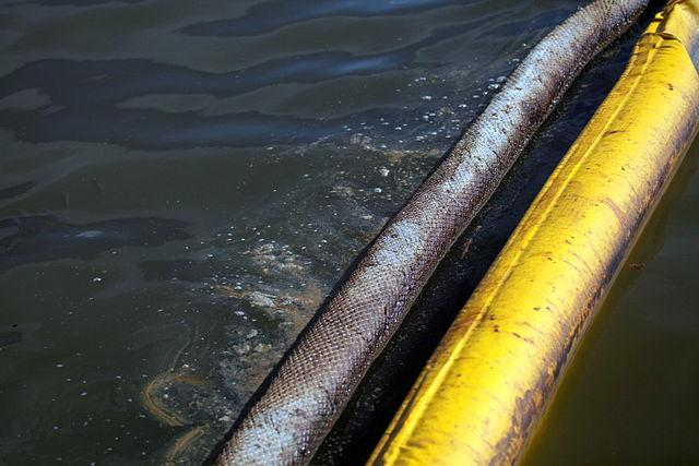 Derramamento de óleo no Golfo do México (2010): causas, consequências 5