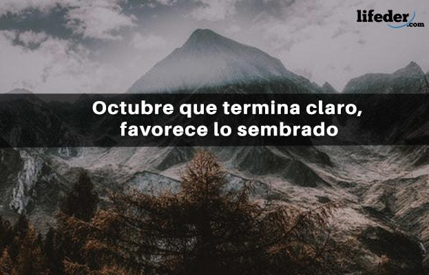 67 frases bonitas de outubro 13