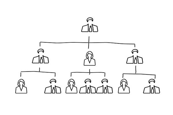 Organograma de uma empresa de serviços: estrutura e exemplo 1