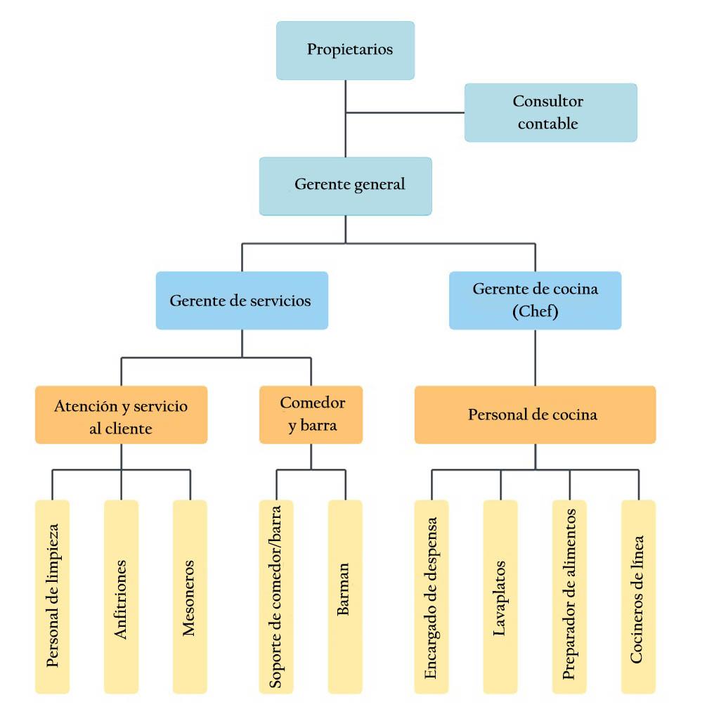 Organograma de uma empresa de serviços: estrutura e exemplo 2