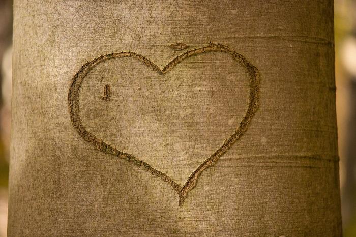 45 imagens de amor para compartilhar no Facebook 39