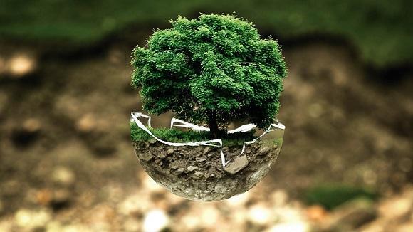 5 poemas sobre o ambiente de autores conhecidos 1