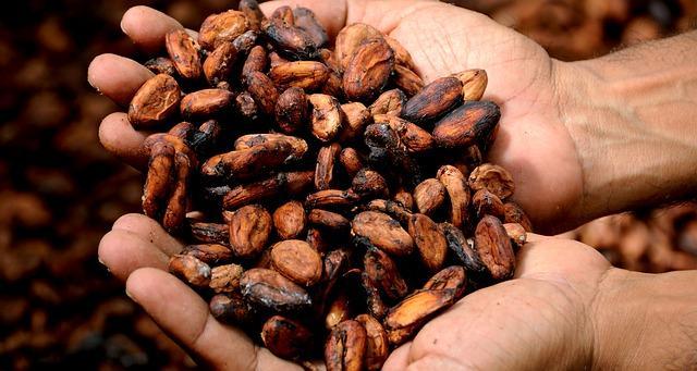 10 produtos da Amazônia equatoriana 1