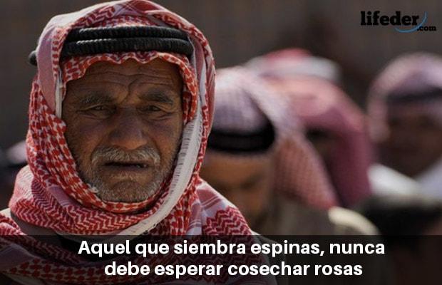 100 belos provérbios árabes 19