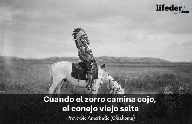 150 belos provérbios de índios americanos 5