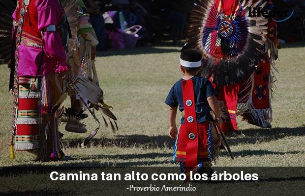 150 belos provérbios de índios americanos 6