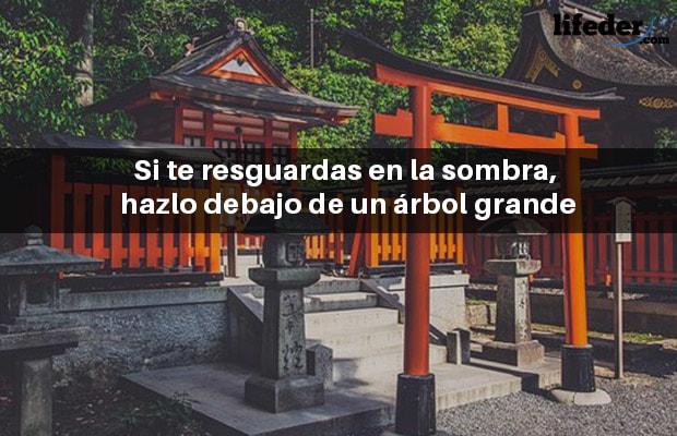 100 Provérbios Japoneses Bonitos 5