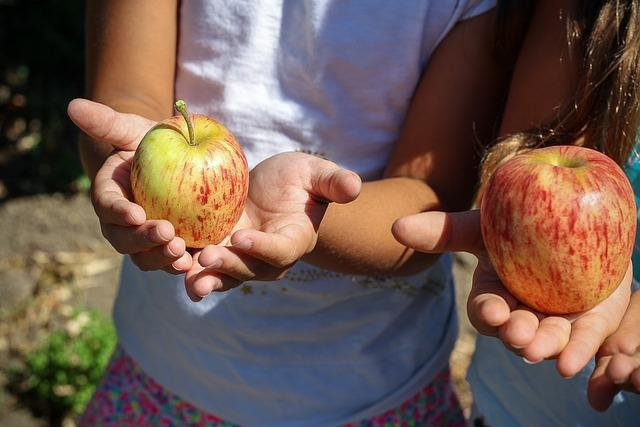 Importância das hortas escolares: 5 razões 1