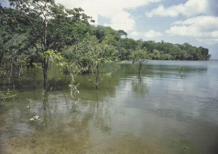 As 5 encostas da Colômbia 5