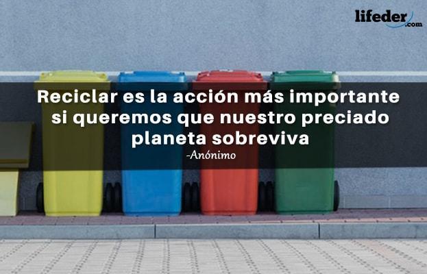 As 41 melhores frases de reciclagem 11
