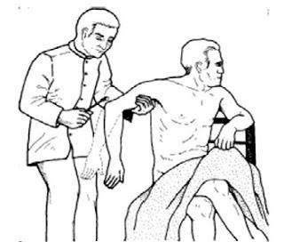 Reflexo tricipital: via aferente e eferente, fisiologia 1