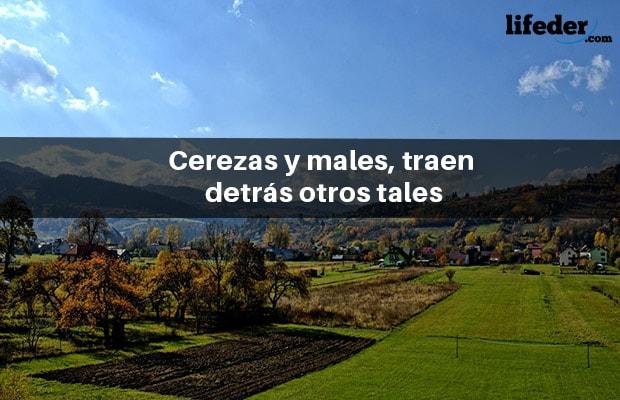Os 200 ditados espanhóis mais populares 19