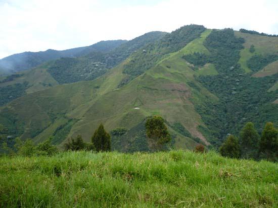 Os 23 Parques Naturais da Região Andina 1