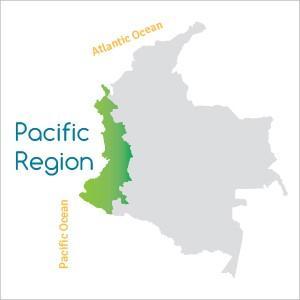 Região Pacífico da Colômbia: características, clima 2