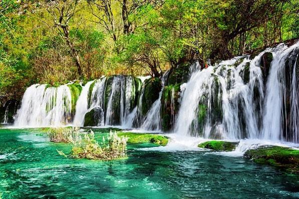 As 8 regiões naturais do mundo e suas características 1
