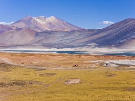 Alívio do Chile: Zona Norte, Zona Central, Zona Sul 1