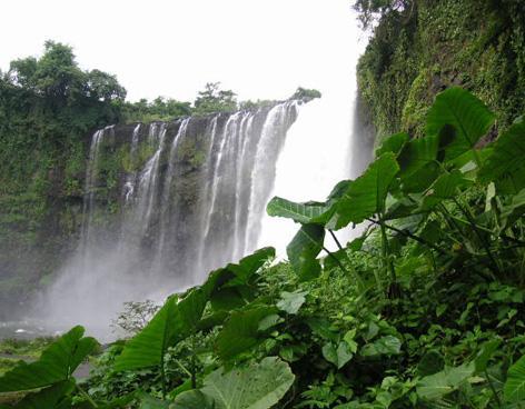 As 7 regiões naturais de Veracruz e suas características 1