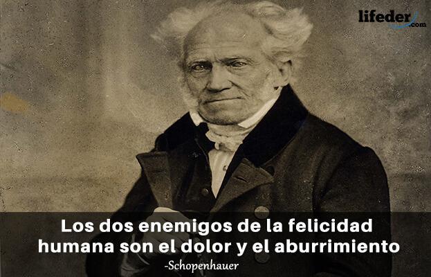 As 100 melhores frases de Schopenhauer 5