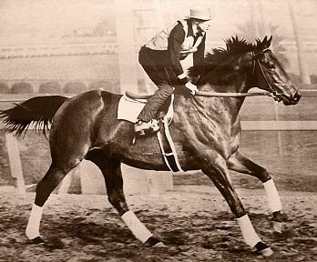 Os 30 cavalos mais famosos da história 9