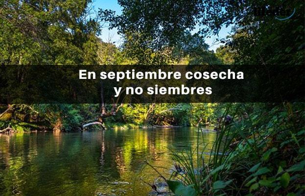 70 frases bonitas de setembro 18