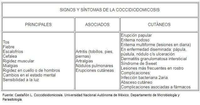 Coccidioides immitis: características, morfologia, patologia 2