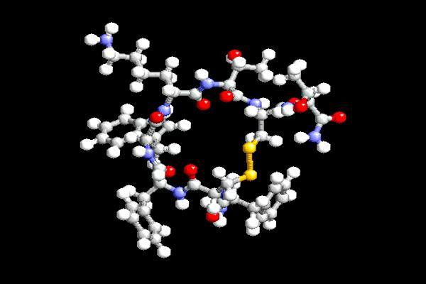 Somatostatina: características, função e doenças 1
