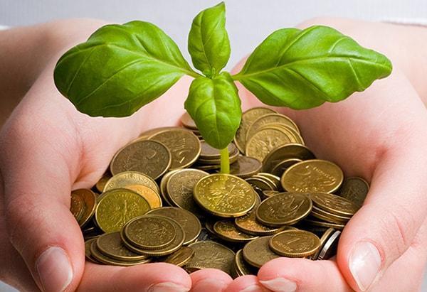 Sustentabilidade Econômica: Características e Estratégias 1